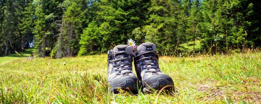Wanderroute vom Sonnenhotel Hoher Hahn zur Berggaststätte Morgenleithe